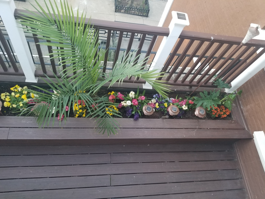 Home of the Month Balcony View